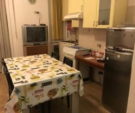 Appartamento Monviso